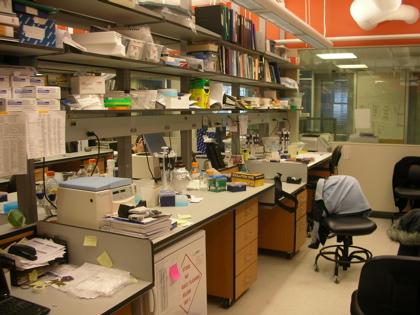 Purugganan Lab