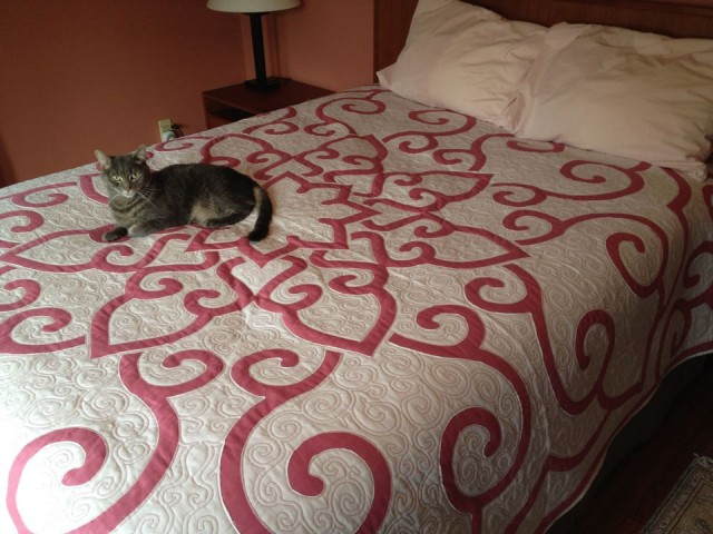 9. Place on Momz's bed.
