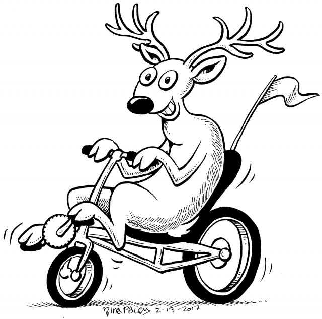 Bicyclin' Deer (the white-tailed deer is the state animal of Illinois)